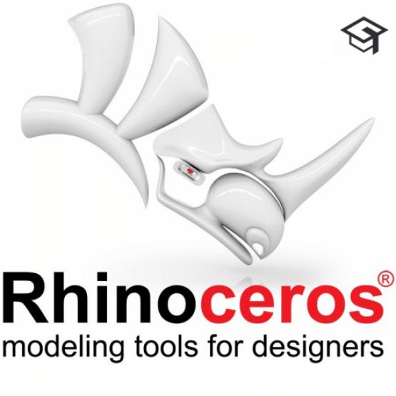Rhino 7 | Educational