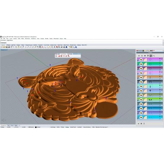 Clayoo | Organic Modeling (E)