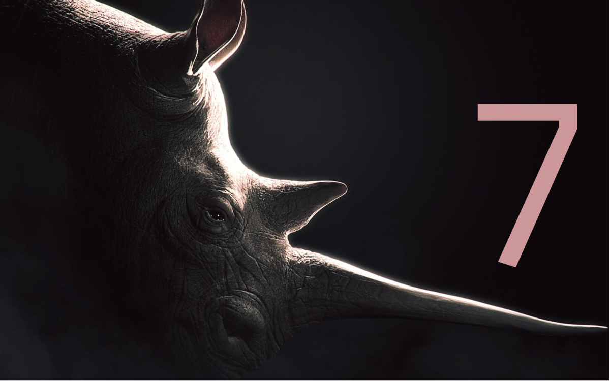 Rhino 7 | Latest Version Released